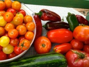 We need a few (NOT many) hot peppers for the salsa.
