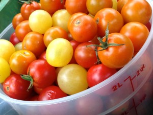 2 quarts of cherry tomatoes. This is two days worth of picking.
