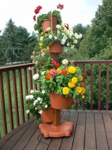 Grow, flowers, herbs or vegetables vertically.